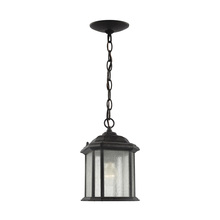 Sea Gull 60029-746 - One Light Outdoor Semi-Flush Convertible Pendant
